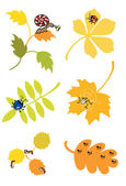 Autumn leaves with little forest creature — Stock Vector