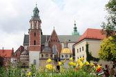 Wawel Royal Castle, Krakow — Stok fotoğraf
