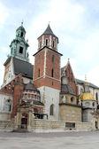 Wawel Cathedral at Wawel Hill, Krakow — Zdjęcie stockowe