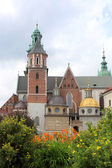 Wawel Cathedral, Wawel Royal Castle in Krakow — Stock Photo