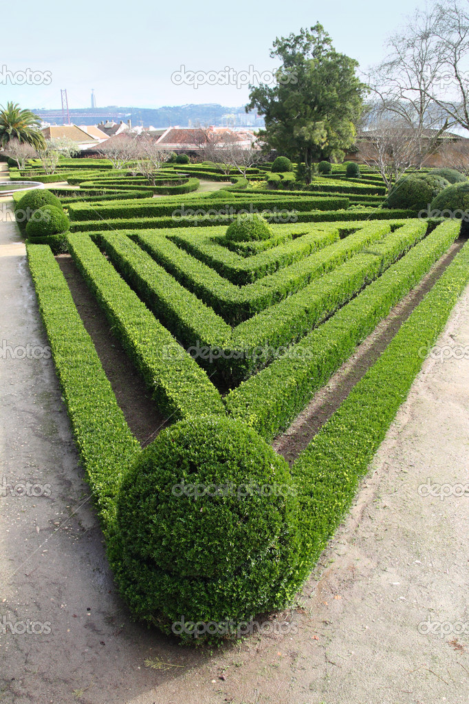 Decorative hedge in Ajuda Botanical Garden, Lisbon, — Stock Photo #11574382