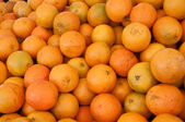 A lot of oranges — Stock Photo