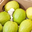 Stock Photo: Close of box of guavas