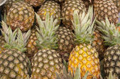 Group of pineapples — Stock Photo
