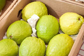 Close of box of guavas — Stock Photo