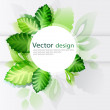 Stock Vector: Green leaves abstract