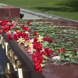 Stock Photo: Victory Day. Flowers in memory of World War