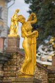 Aphrodite (Venus) Kallipiga — ストック写真