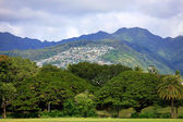 Houses On A Hill, Oahu, Hawaii — Stock Photo