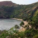 Hanauma Bay, Hawaii — Stock Photo #11398649