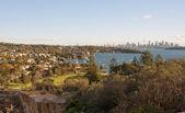 Watsons Bay and Sydney City — Stock Photo