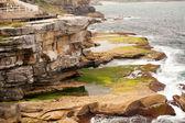 Mossy Coast, East Sydney, Australia — Stock Photo