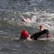Stockfoto: Female swimmers in sea