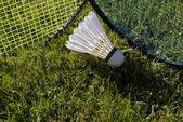 Två badmintonracketar — Stockfoto