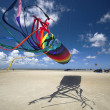 Fly a Kite - Foto de Stock