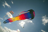Action Kite Sport — Stock Photo
