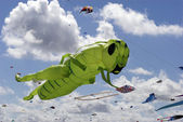 Green Grasshopper Kite — Stock Photo