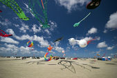 Kites all over the beach — Stock Photo
