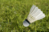 Shuttlecock over grass — Foto Stock