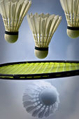 Badminton with shuttlecocks — Stock Photo