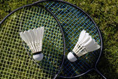 Two rackets on grass — Photo