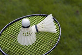 Two shuttlecocks on racket — Stock Photo