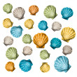 Stock Vector: Shells background