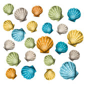Shells background — Stock Vector