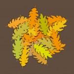 Oak leaves — Stock Vector
