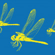 Stock Vector: Dragonfly