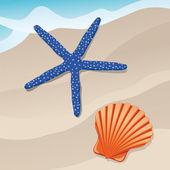 Starfish and shell — Stock Vector