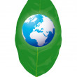 Globe on the leaf - Stock Vector