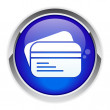 Button internet bankcard icon. — Imagen vectorial
