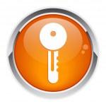 Button Internet key icon. — Stock Vector