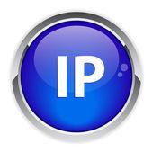 固定 ip アドレス ボタン — ストックベクタ