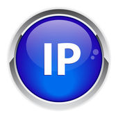 Botón de dirección ip fija — Vector de stock
