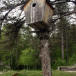 Birdhouse — Foto Stock #11222346