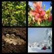 four seasons&quot — Stock Photo