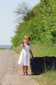A beautiful little girl on the nature with a suitcase — Stock Photo