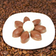 Chocolates and cocoa beans - Stock Photo