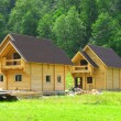Construction of wooden houses - Foto Stock