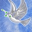 White dove illustration — Stock Photo