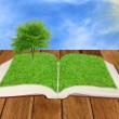 Open book illustration of a tree - Stok fotoraf