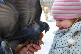 Dove and a girl — Stockfoto