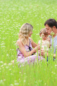 A young family on the field — Stock Photo