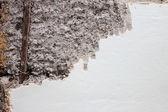 Schuppige wand — Stockfoto