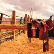 Stock Photo: Navajo Horse Saddles