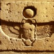 Stock Photo: Scarab script