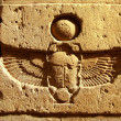 Scarab script - Stock Photo