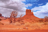 Monument Valley after the rain — Stock Photo